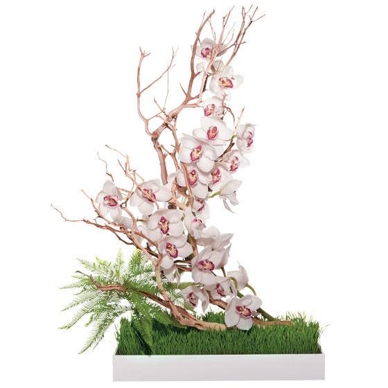 Unique-wedding-centerpieces-white-cymbidium-orchids-umbrella-fern-wheatgrass-manzanita-branch.full