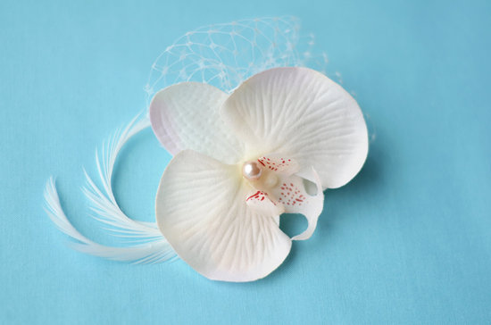 photo of Orchid hair flower