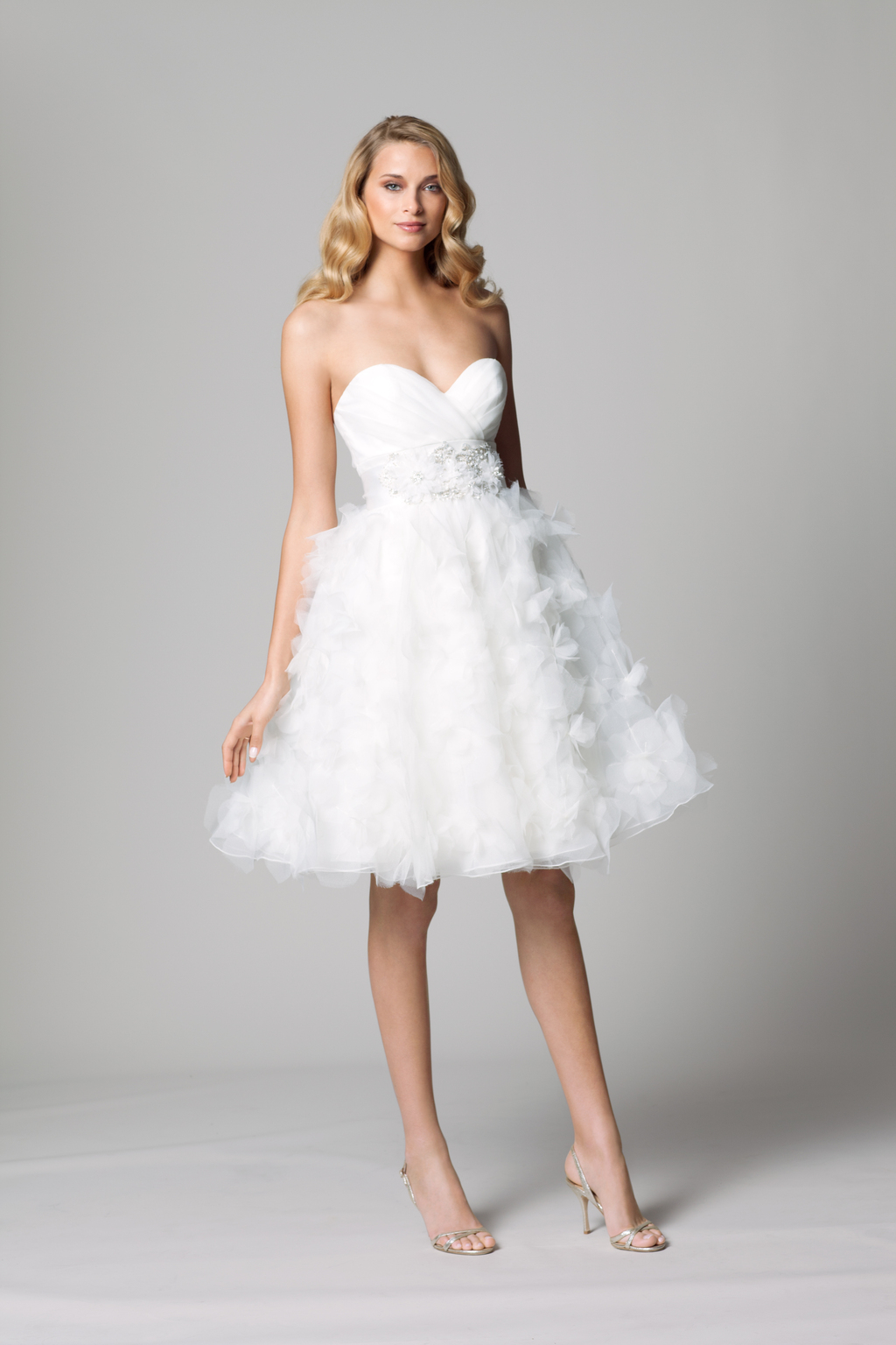 Fall-2012-wedding-dress-wtoo-bridal-gown-by-watters-9-lwd.full