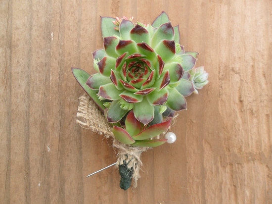 photo of Rustic succulent boutonniere