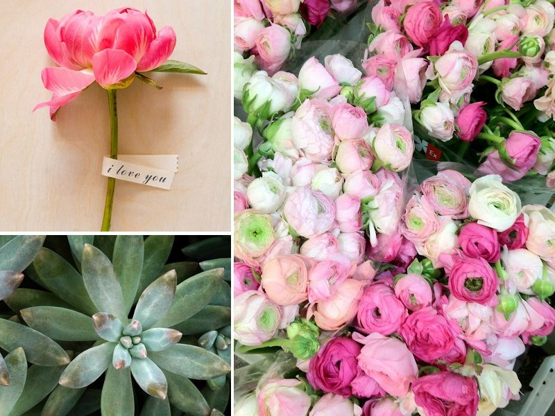Wedding-flower-inspiration-peonies-ranunculus-succulents.full