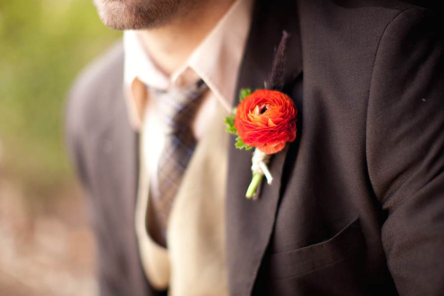 Grooms boutonniere in orange anemone on a  dark brown suit