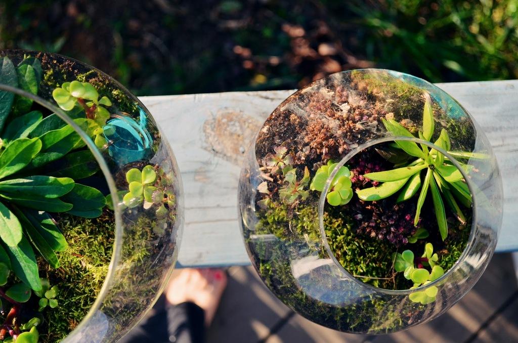 Eco-chic-wedding-ideas-mossy-wedding-centerpieces-terrariums-1.full