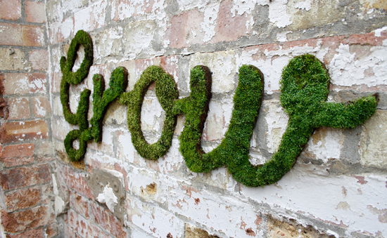 photo of 5 Mossy DIYs to Beautify Your Wedding