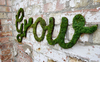 Diy-wedding-projects-eco-friendly-decor-moss-grafitti.square
