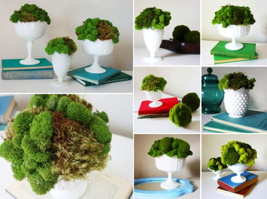 moss wedding centerpieces DIY reception ideas wedding flower alternatives 2