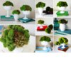 Moss-wedding-centerpieces-diy-reception-ideas-wedding-flower-alternatives-2.square