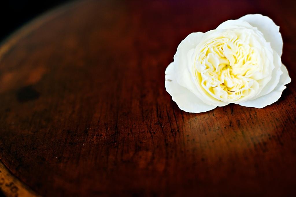 Real-weddings-winter-wedding-reception-wedding-hair-glower.full