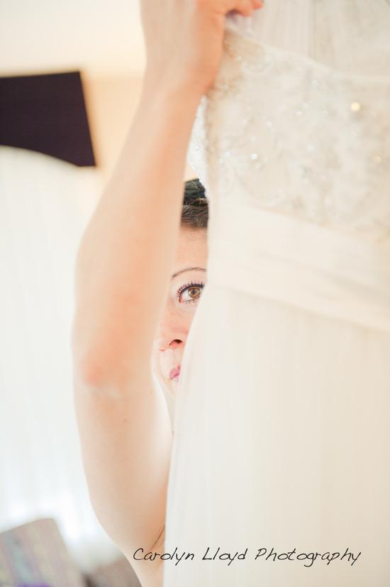 photo of Carolyn Lloyd Photography