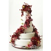 Wedding-cake-inspiration-ron-ben-isreal-wedding-cakes-red-pink-cascading-florals.square