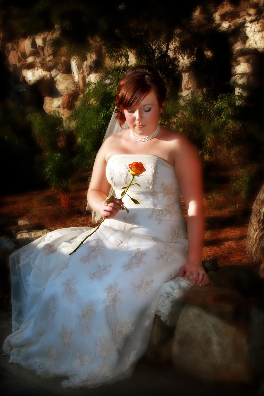 Asheville%20wedding%20photography%20brides%20and%20grooms%20(1).full
