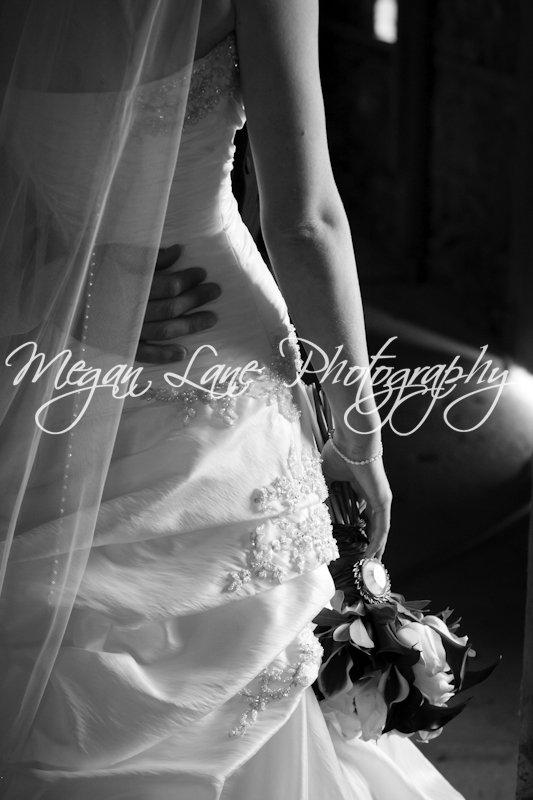 photo of Megan Lane Photography