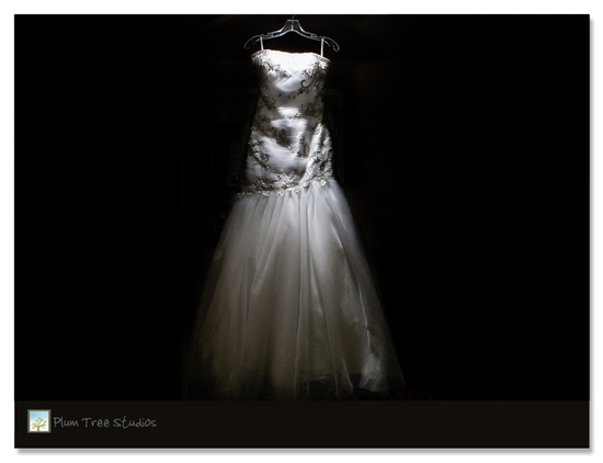 Shirley Acres Wedding Photographers The Dress AR1