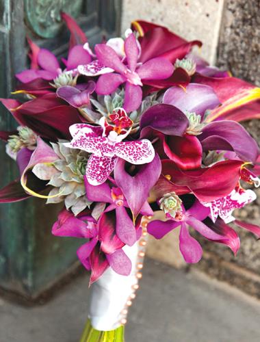 Phillipsflowers-3.full