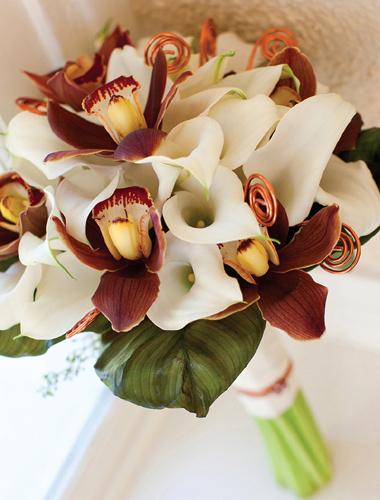 Phillipsflowers-1.original.full