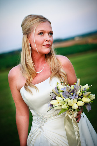 Bride_posing_in_field-3_.full