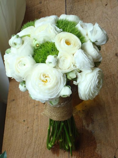 Florist%20daytona%20beach.full