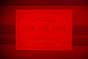 photo of 4 Awesome Interactive Save the Dates to Get Your Wedding Guests Involved