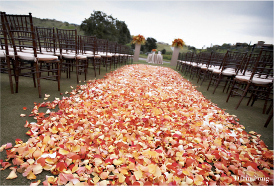 rose petal aisle runner for outdoor ceremonies unique wedding flower peach petal covered aisle