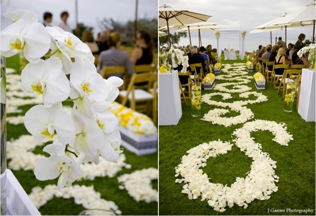 Rose Petal Aisle Runner For Outdoor Ceremonies Unique Wedding Flower Ideas 5