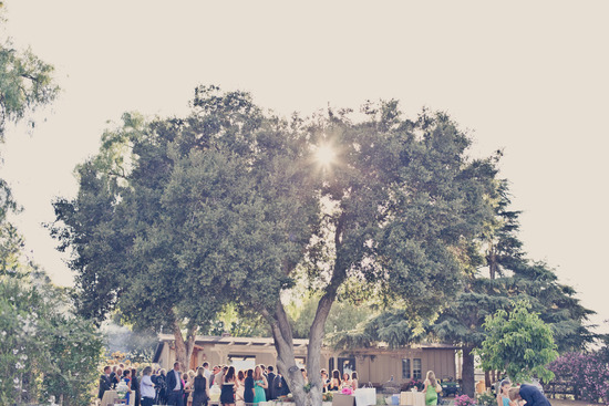 Elegant real weddings lavender peach wedding colors cocktail hour beneath tree