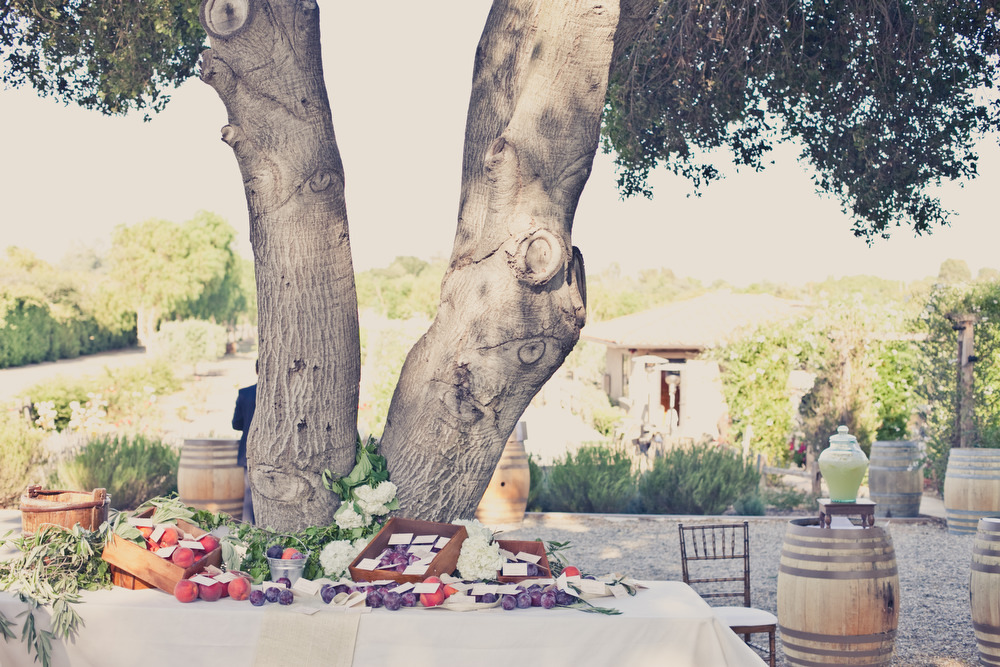 Elegant-real-weddings-lavender-peach-wedding-colors-reception-welcome-table-beneath-tree.full