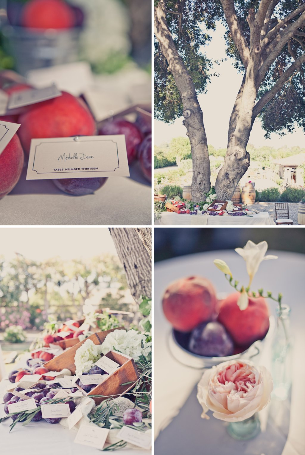 Elegant-outdoor-weddings-peach-lavender-wedding-colors-fruit-infused-decor.full