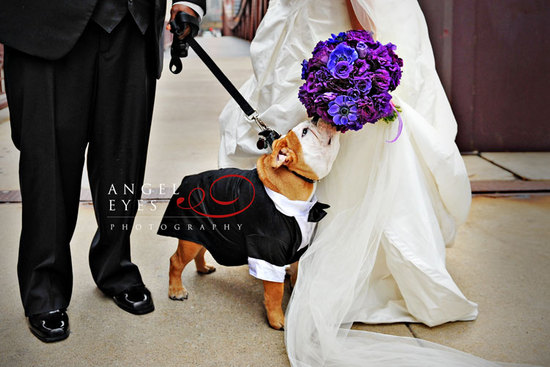 priceless wedding photos escape from wedding planning stress Unforgettable Ring Bearers smell the ro