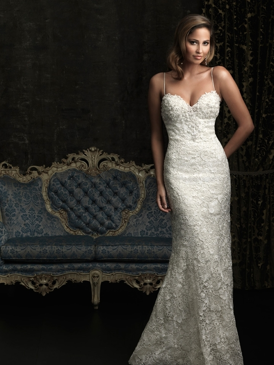 gorgeous 2013 wedding dress by Allure bridal gowns 8959