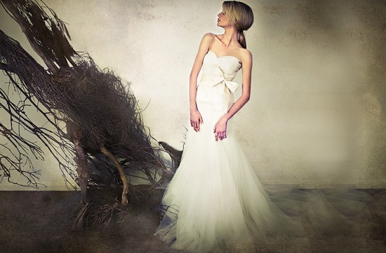 2013 wedding dresses by Sarah Janks elegant bridal gowns 2