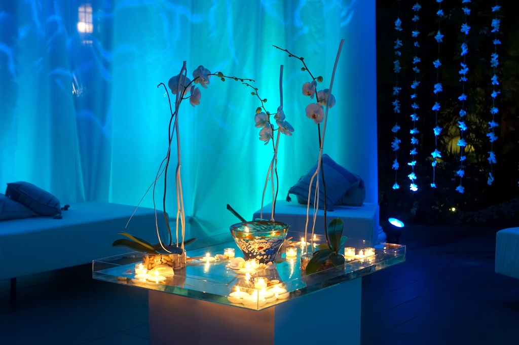 Wedding-details-reception-decor-inspiration-by-jerri-woolworth-blue-lighting-orchid-centerpieces.full