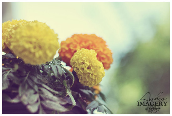 wedding color inspiration for brides from Etsy weddings Marigold flowers
