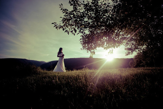 priceless wedding photo bridal portrait outside