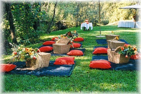 photo of Fun Ideas for a Picnic Wedding Reception