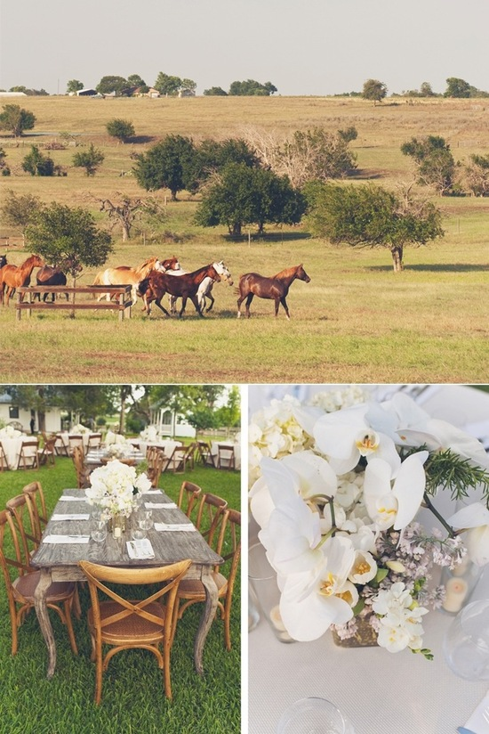 rustic farm wedding texas wedding photographers wild horses elegant centerpieces
