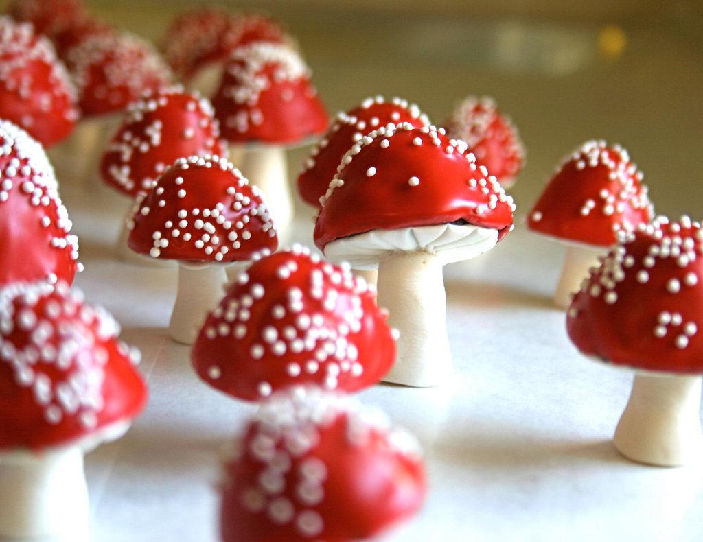 Sweet-wedding-treats-edible-favors-whimsical-mushrooms.full