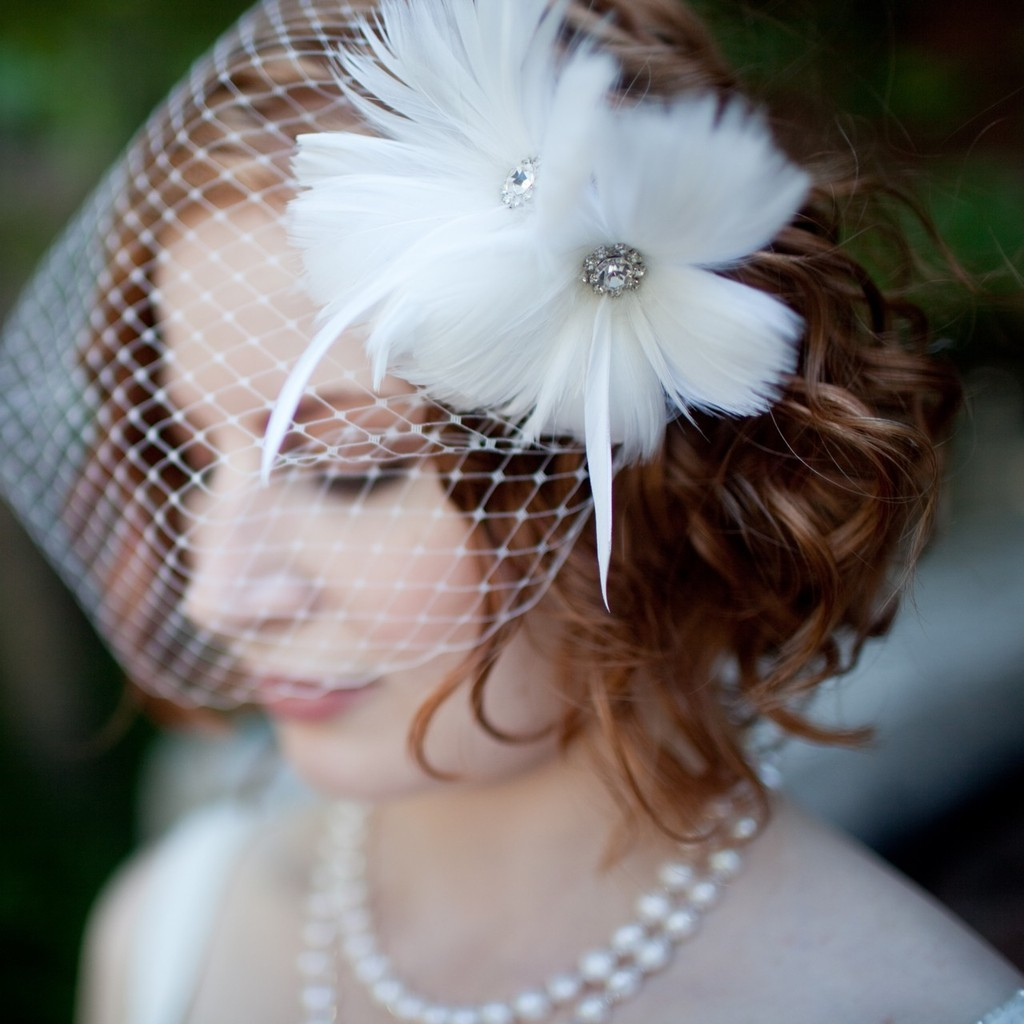 10-gorgeous-bridal-veils-wedding-hair-accessories-bethany-lorelle-birdcage-veil.full