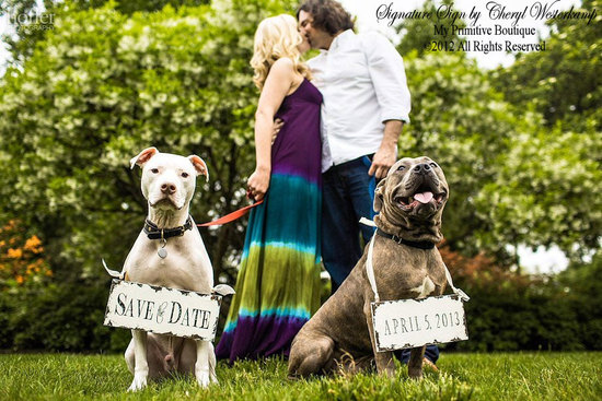 dapper wedding accessories for your dog save the date signs