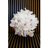 White-orchid-bridal-bouquet-with-touches-of-pink.square