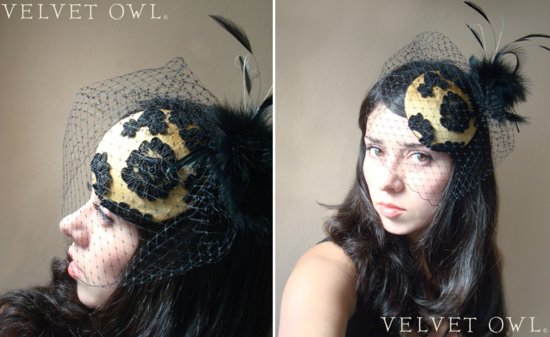 photo of Velvet Owl