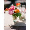 Real-wedding-santa-barbara-chic-michael-and-anne-costa-photography-outdoor-winery-vibrant-colors-colors-flowers-small-centerpiece-332.square