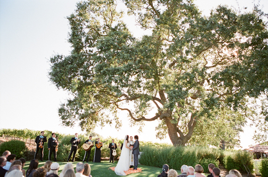 Vibrant Outdoor California Winery Wedding