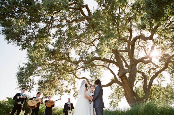 Real-wedding-santa-barbara-chic-michael-and-anne-costa-photography-outdoor-winery-vibrant-colors-bride-and-groom-wedding-dress-suit-veil-ceremony-venue-vows-167.full