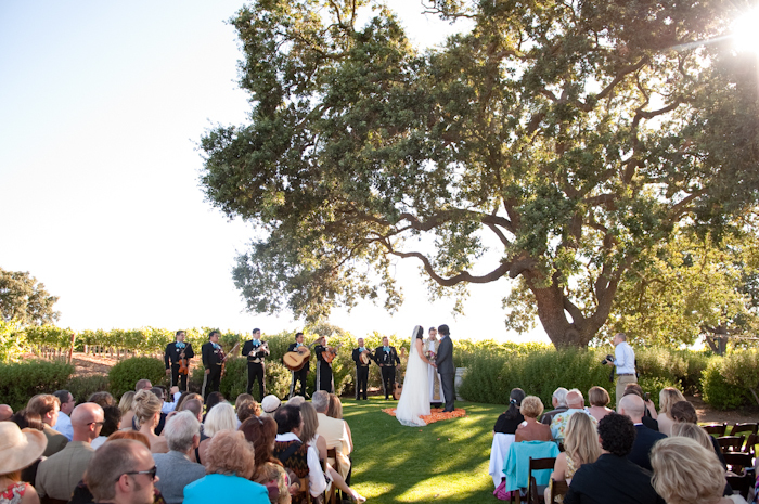 Real-wedding-santa-barbara-chic-michael-and-anne-costa-photography-outdoor-winery-vibrant-colors-bride-and-groom-wedding-dress-suit-veil-ceremony-venue-vows-171.full