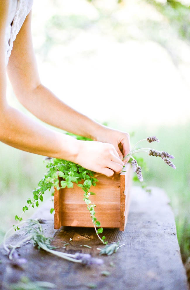 Santa-barbara-chic-wedding-flowers-diy-green-herb-centerpiece-ideas-lavender-wedding-centerpiece-ideas-7.full