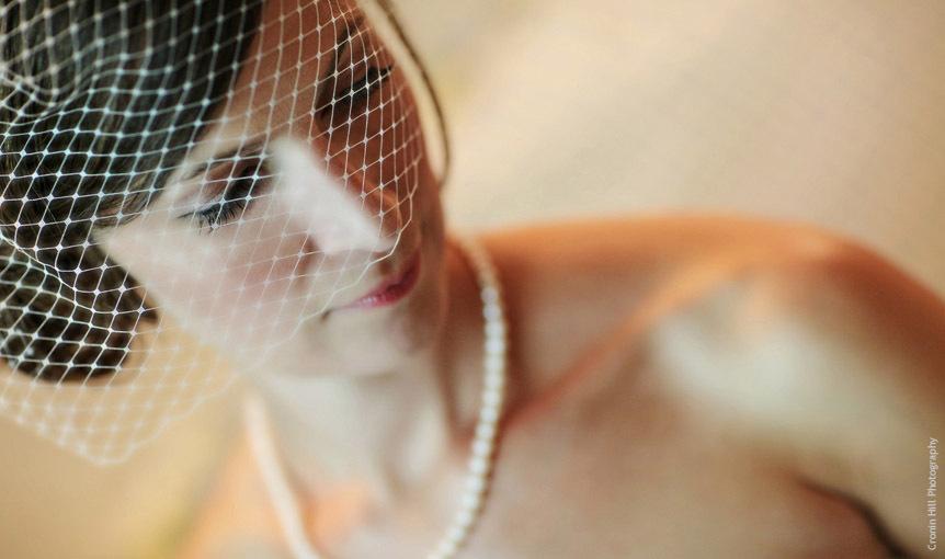 Abby-birdcage_veil.full