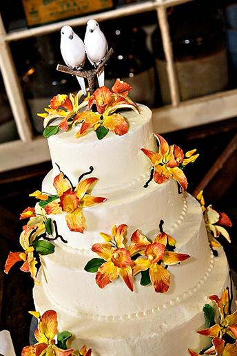 Cake_11.full
