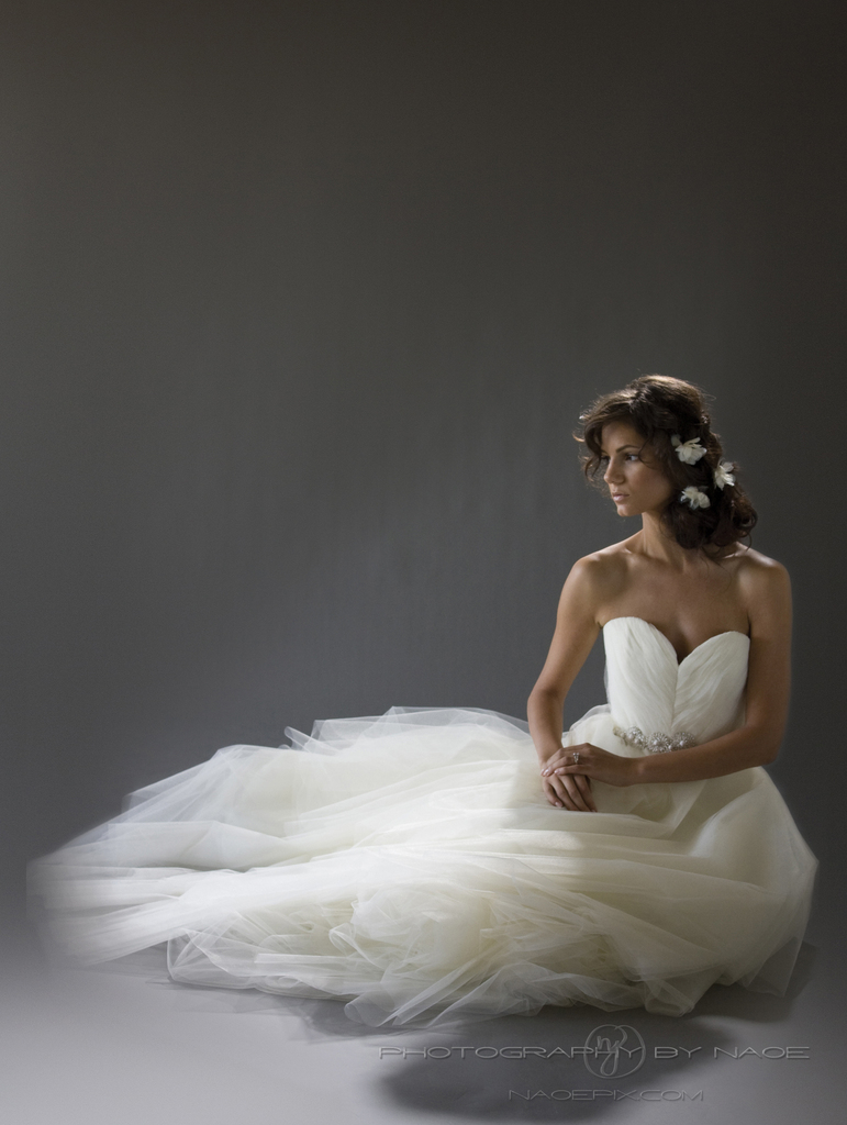 photo of wedding dress spring 2013 bridal gown cocoe voci 3 back