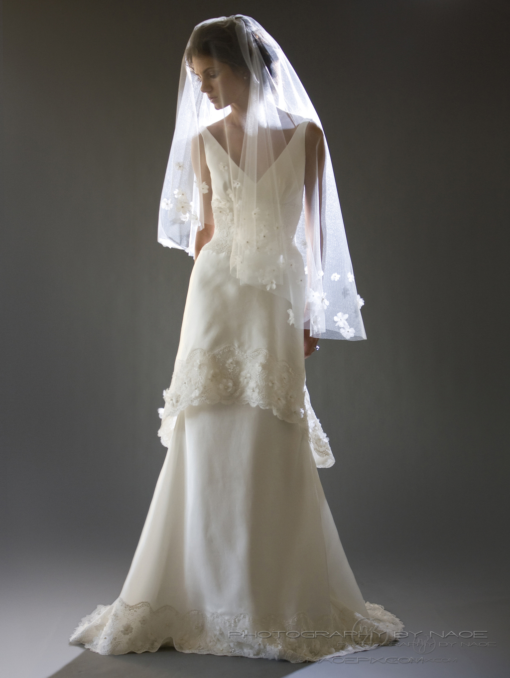 Wedding-dress-spring-2013-bridal_gown-cocoe-voci-7-veil.full