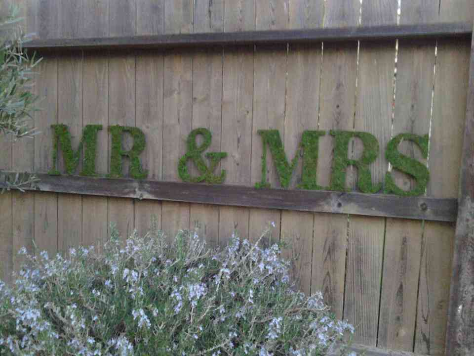 memorable moss wedding decor for ceremony reception mr mrs sign